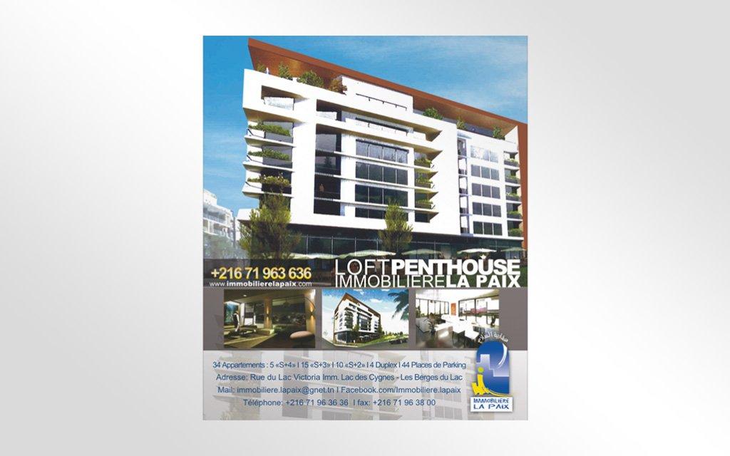 Affiche Immobilière la Paix