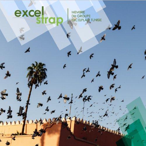 Community Management ExcelStrap