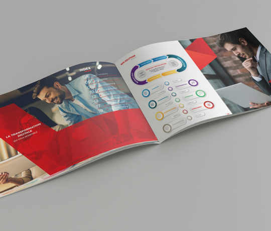 Conception Graphique Brochure Cloudcontrol